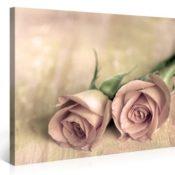 Landliebe - Premium Kunstdruck Wand-Bild - 100x75cm XXL Leinwand-Druck in deutscher Marken-Qualität - Leinwand-Bilder auf Holz-Keilrahmen als moderne Wohnzimmer Deko