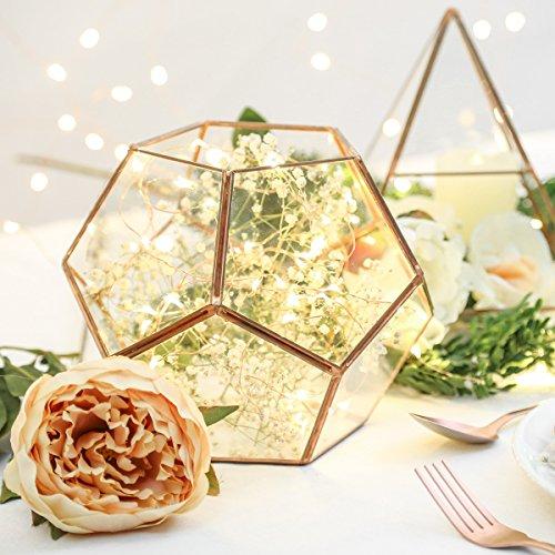 Vase Mini Gewachshaus Aus Glas Und Metall Farbe Kupfer